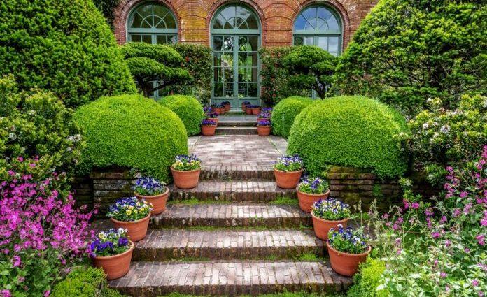Gardening Top Tips – Get Into Gardening